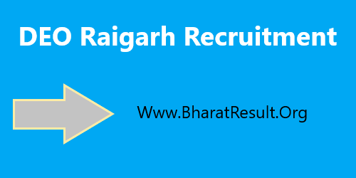 DEO Raigarh Recruitment 2020 Apply Offline For Various 41 Posts