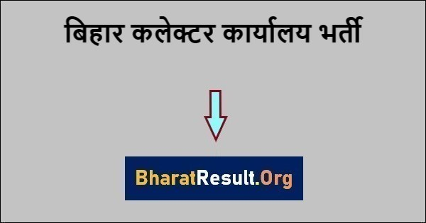 Bihar Collector Office Recruitment 2021: 250 Data entry operator and others Post Apply Soon