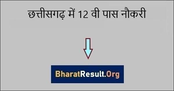 This image has an empty alt attribute; its file name is Chhattisgarh-me-12-vi-pass-Naukri.jpg